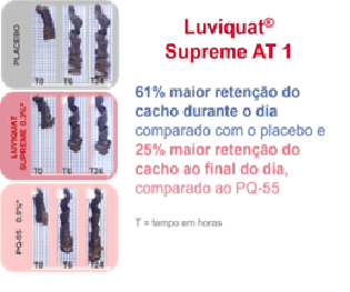 Luviquat Supreme AT 1